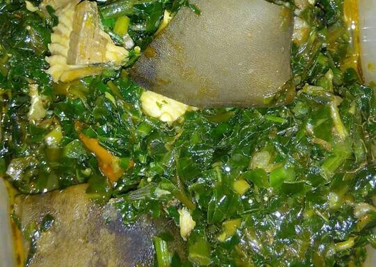 vegetable soup recipe main photo 2